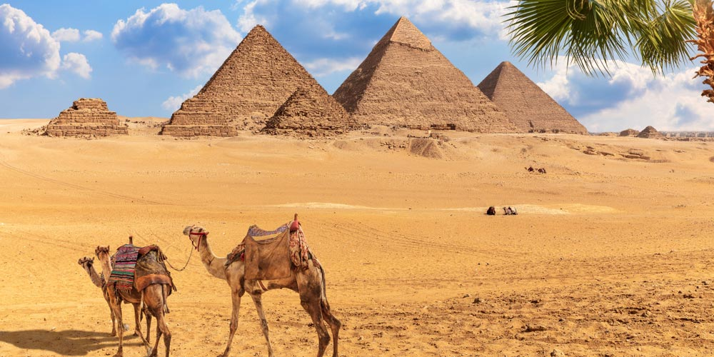 Tour to Cairo and Giza Pyramids From Sokhna Port | Cairo Day Trip from Sokhna