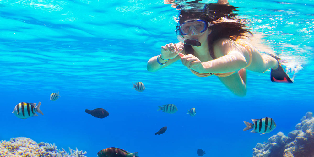 Hurghada Snorkeling Tours - Trips in Egypt