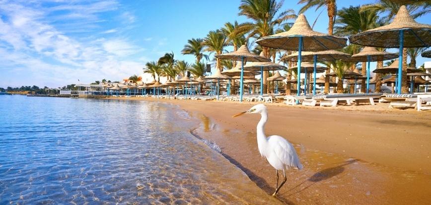 Hurghada beach | 12 Days Cairo, Nile Cruise, Hurghada tour | TripsInEgypt