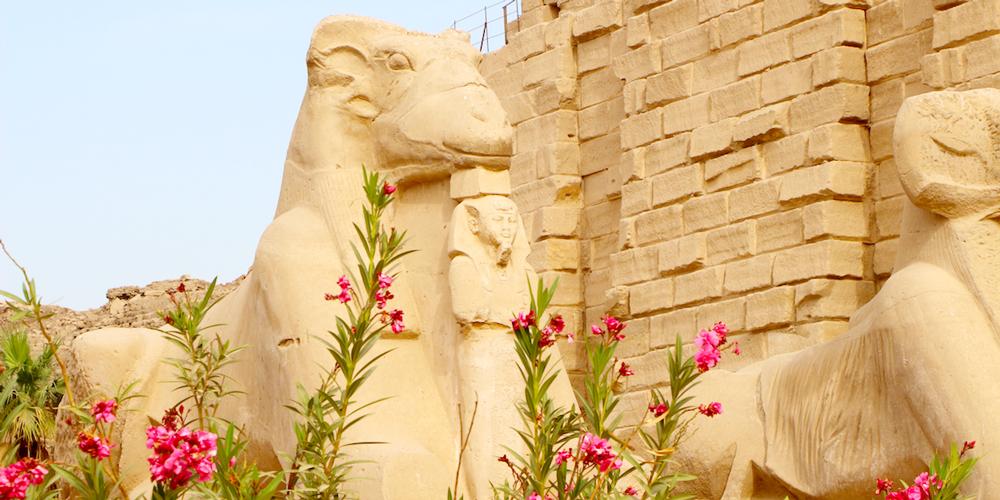 7 Night Nile Cruise Itinerary Aswan to Luxor   8 Day Nile Cruise Itinerary