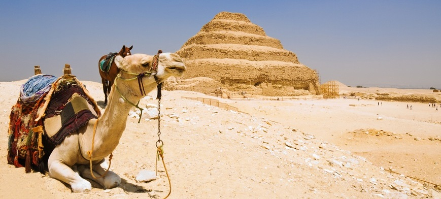 Saqqara Pyramid | Day Trip to Pyramids from Cairo | TripsInEgypt
