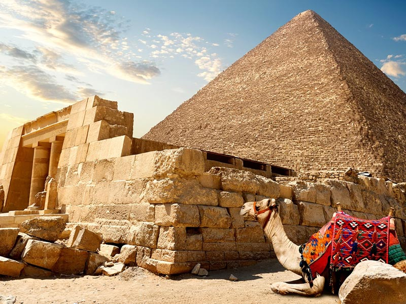 Private Day Trip from Hurghada to Cairo by Car | Hurghada to Pyramids by Car