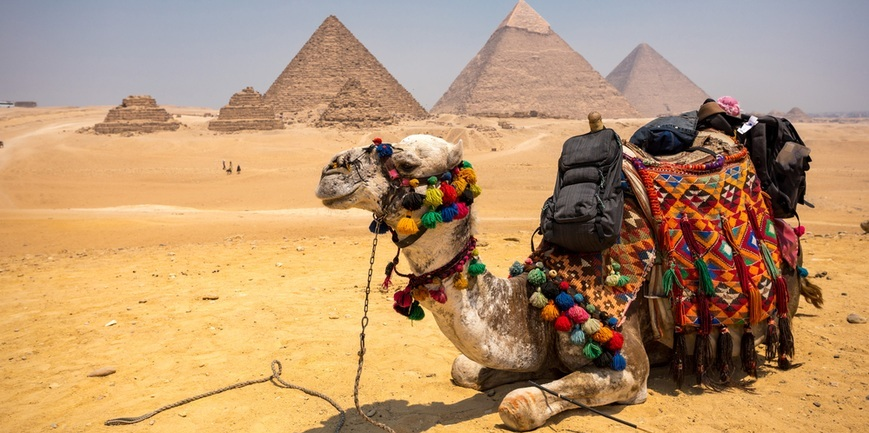 Pyramids of Giza | Cairo Stopover Tour | TripsInEgypt