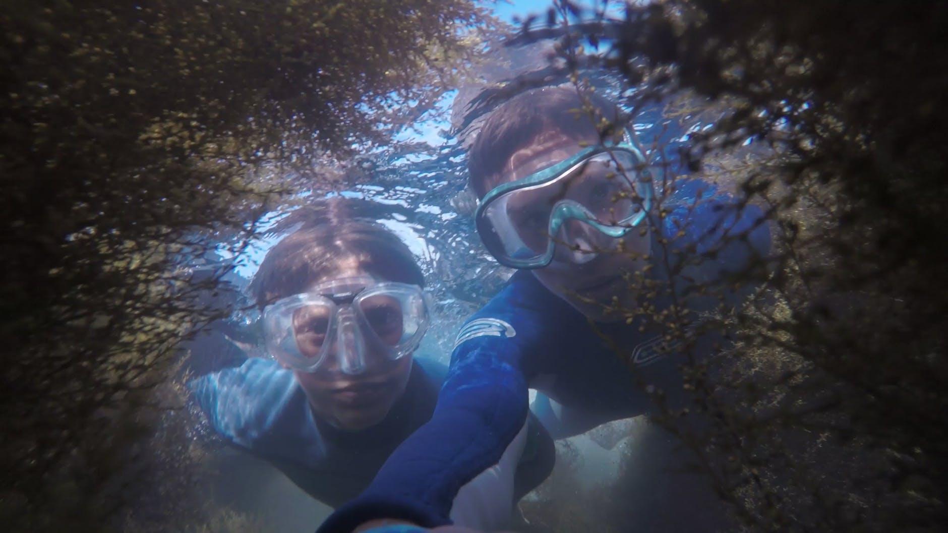 Snorkeling Trip in Hurghada Pic