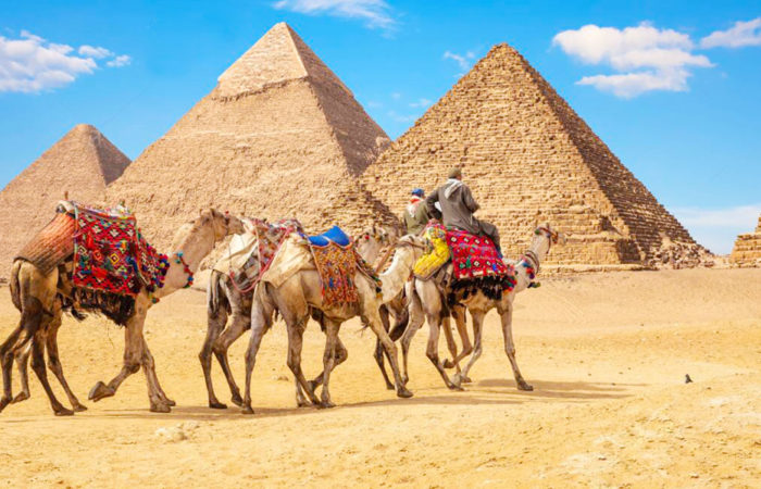 9 Days Cairo, Alexandria & Sharm El Sheikh Holiday - Trips in Egypt