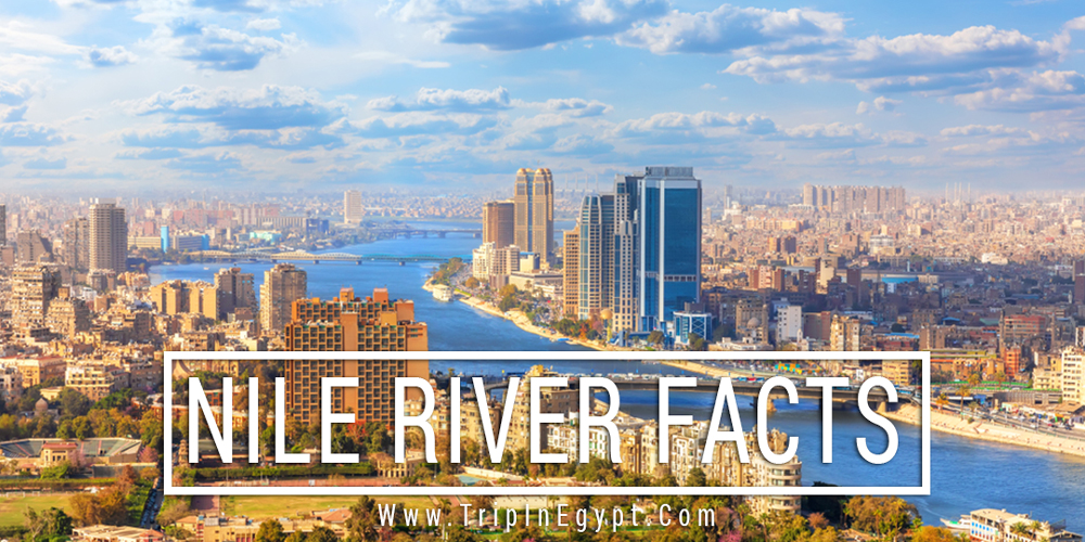 Egypt Nile River Facts - Trips in Egypt