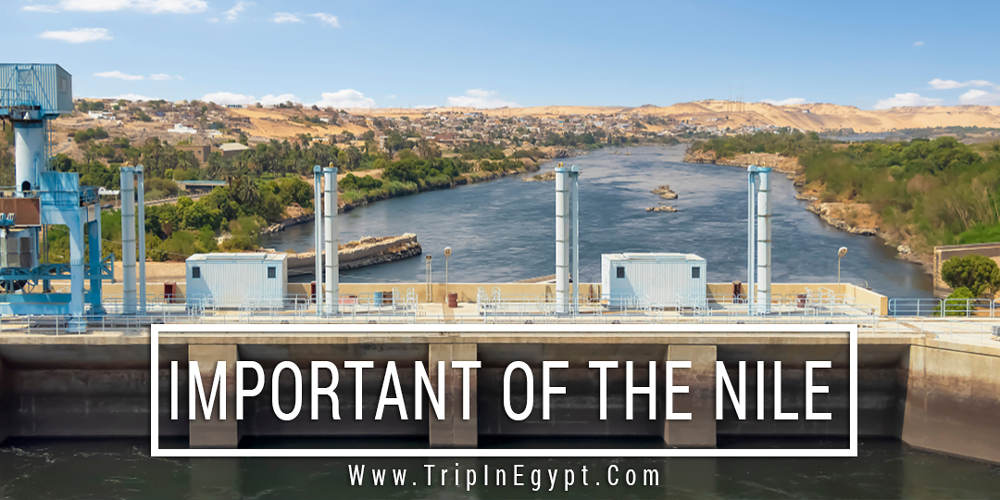 Important of The Nile River - Trips in Egypt