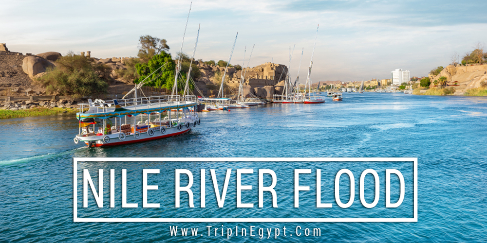 Nile River Flood - Trips in Egypt