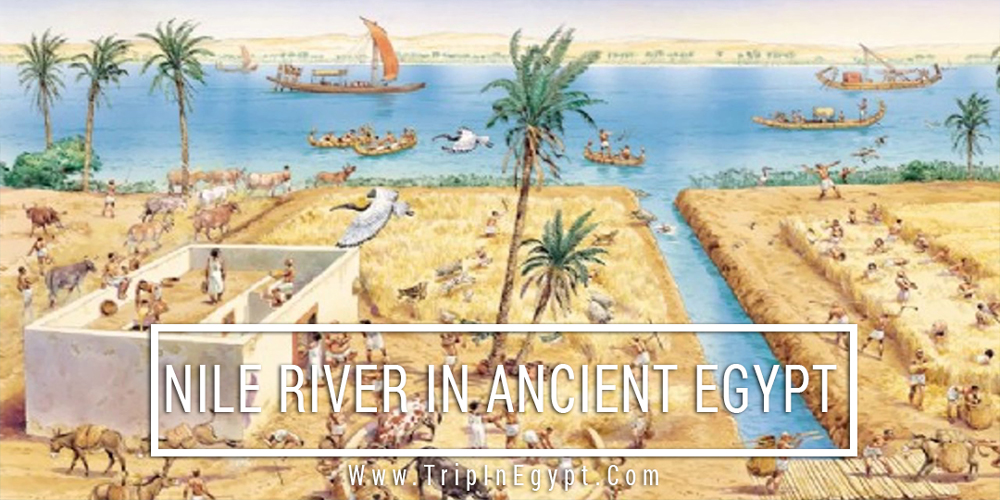Nile River in Ancient Egypt - Trips in Egypt