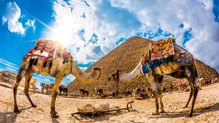 Giza Pyramids | 9 Days Egypt Tour | TripsInEgypt