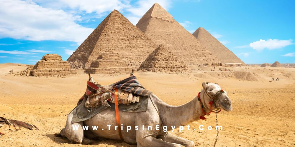 Giza Pyramids - Cairo Egypt - Trips in Egypt