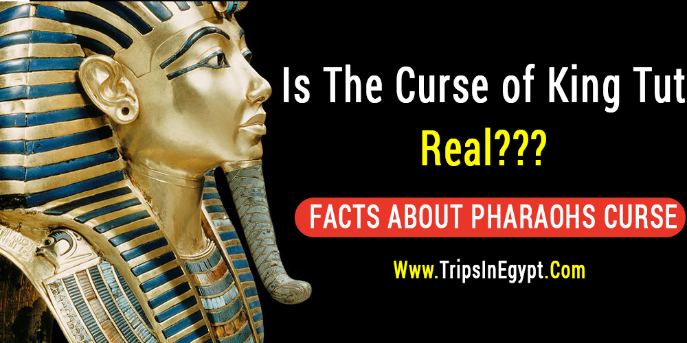 Is The Curse of King Tut Real - Trips in Egypt