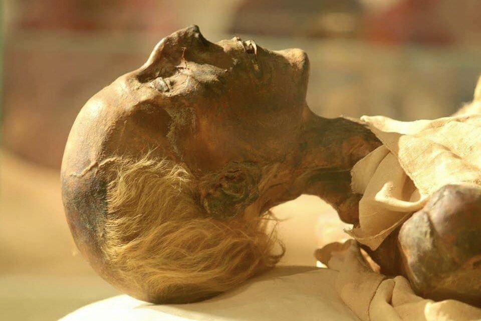King Ramses II Mummy - Trips In Egypt