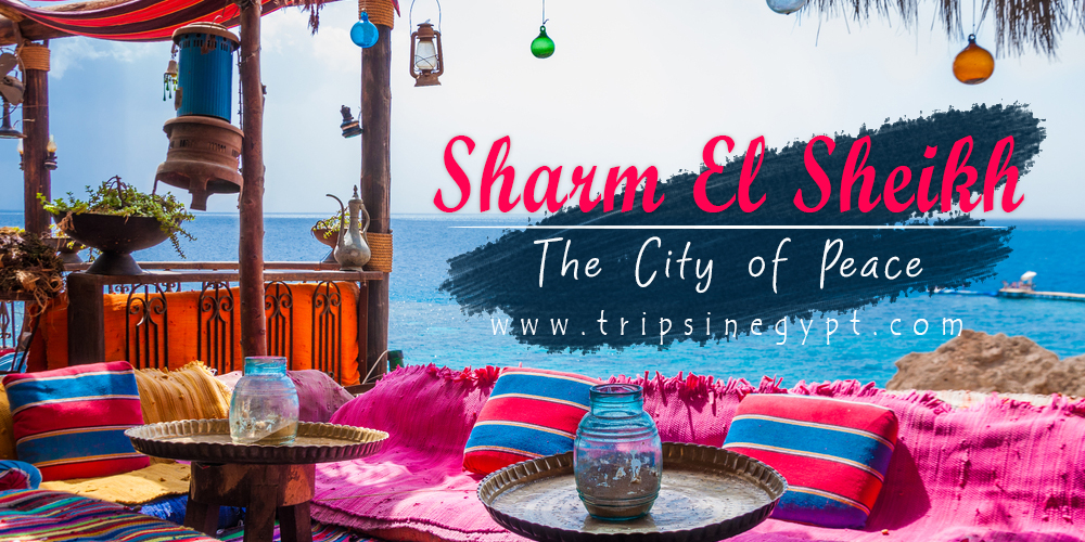 Sharm El Sheikh - Trips In Egypt