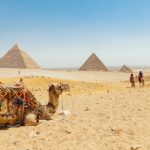 Day Trip from El Gouna to Cairo by Bus - Trips in Egypt