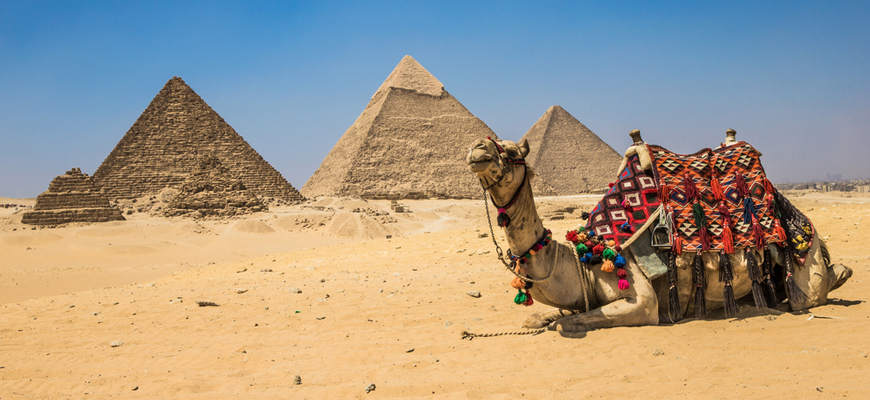 Giza Pyramids - Cairo Day Trip from EL Gouna - TripsInEgypt