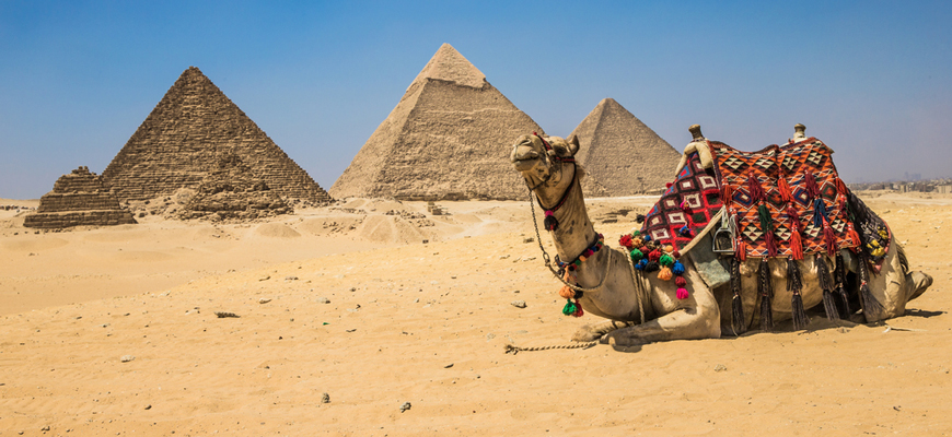 Giza Pyramids - Cairo Day Trips from El Gouna by Car - Trips In Egypt