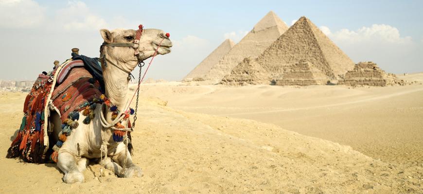 Giza Pyramids | El Gouna to Cairo & Alexandria Tour | TripsInEgypt