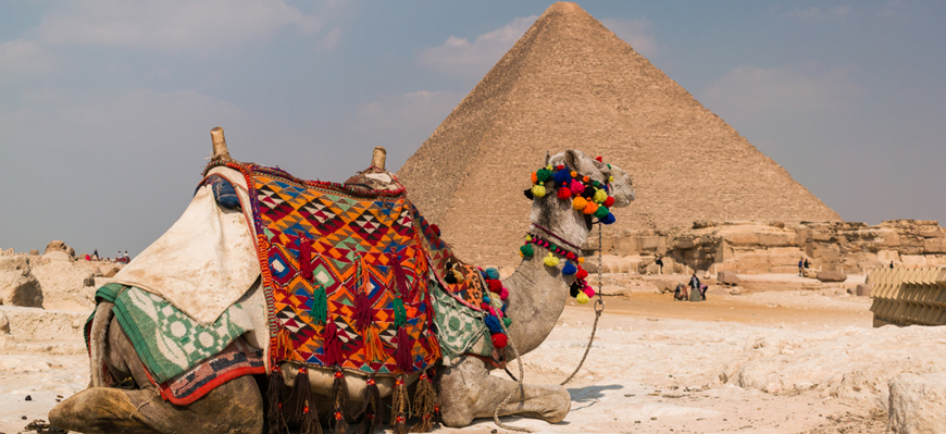 Giza Pyramids - Day Trip from Luxor to Cairo by Plane - TripsInEgypt