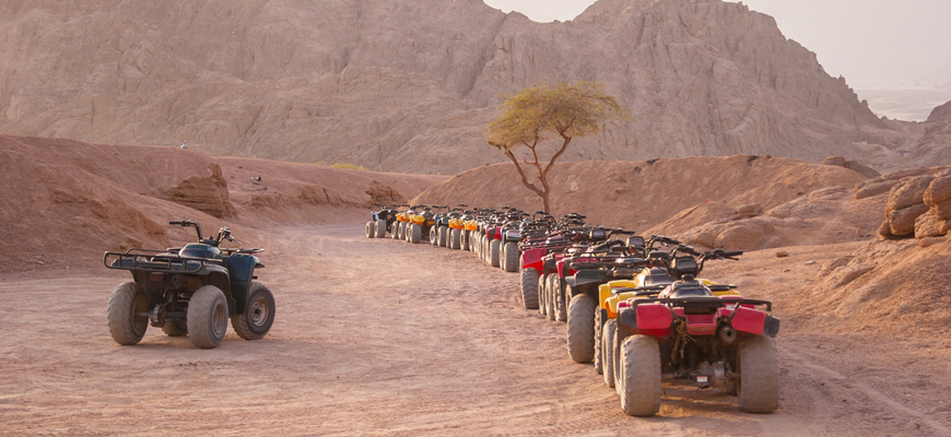 Safari Quad- Safari Trip from El Gouna - TripsInEgypt