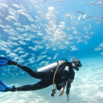 Scuba Diving in El Gouna - Trips in Egypt