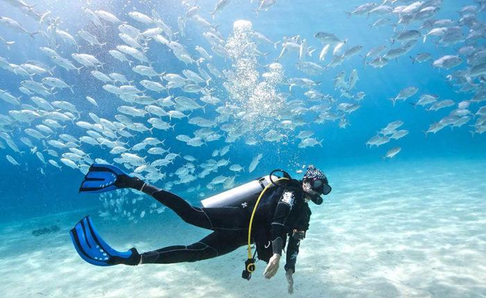 Scuba Diving in El Gouna - Trips in Egypt