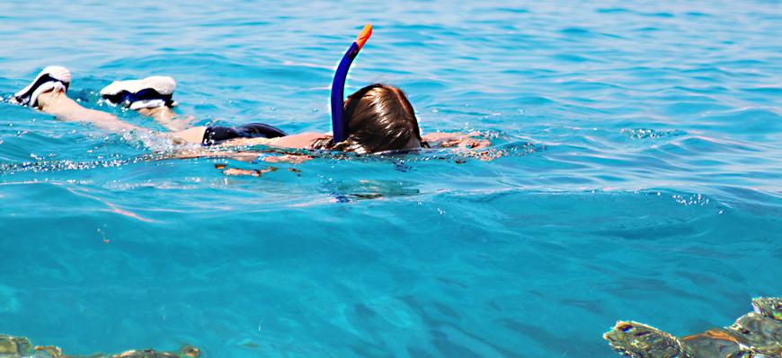 Snorkelling trip | Snorkeling Trip in El Gouna | TripsInEgypt