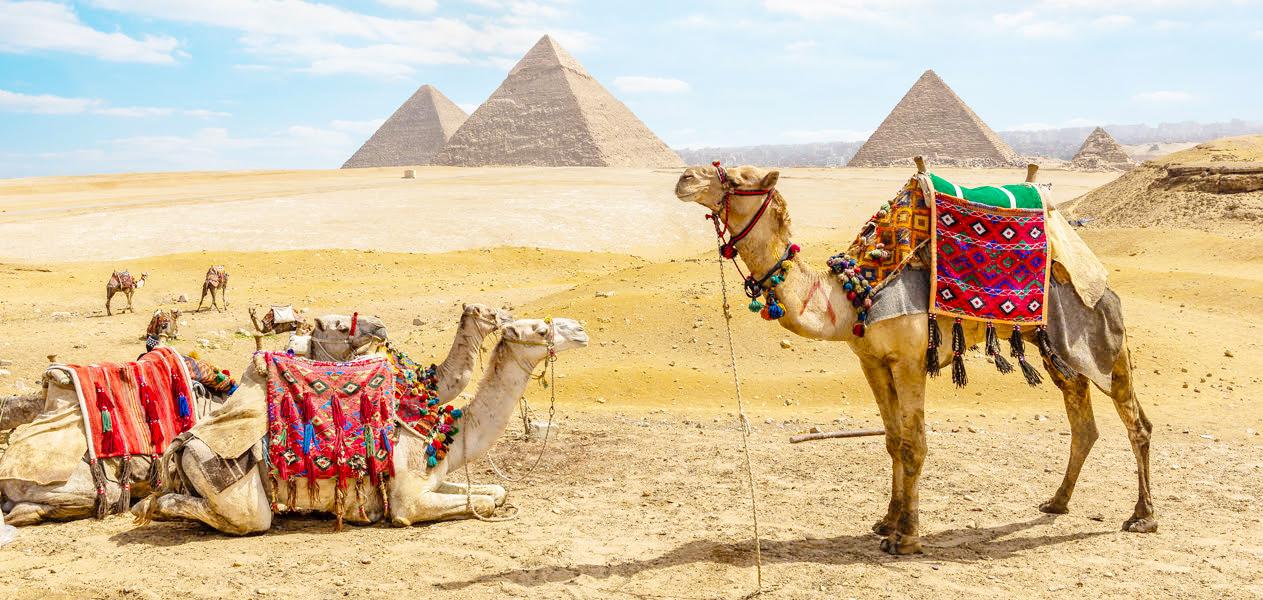 Egypt Old Kingdom - Trips in Egypt
