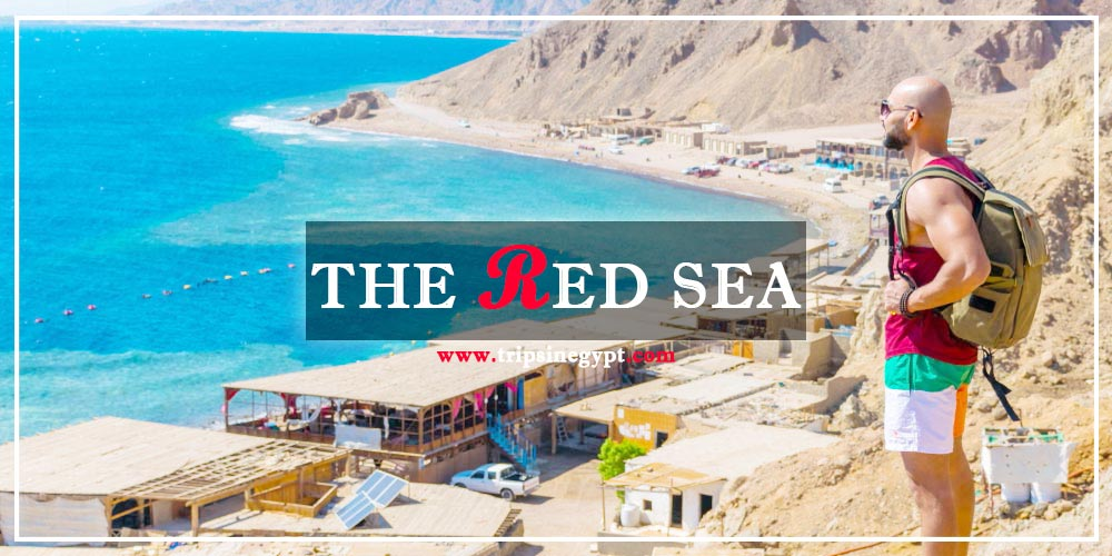 The Red Sea Facts - The Red Sea Location - Why is It Called The Red Sea