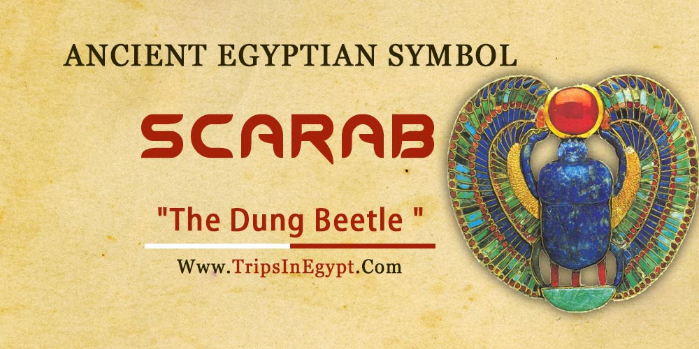 Ancient Egyptian Symbol Scarab - Trips in Egypt