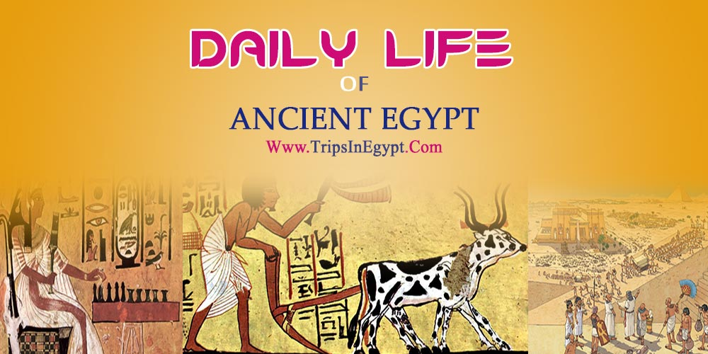 The Daily Life of Ancient Egyptian - Trips in Egypt