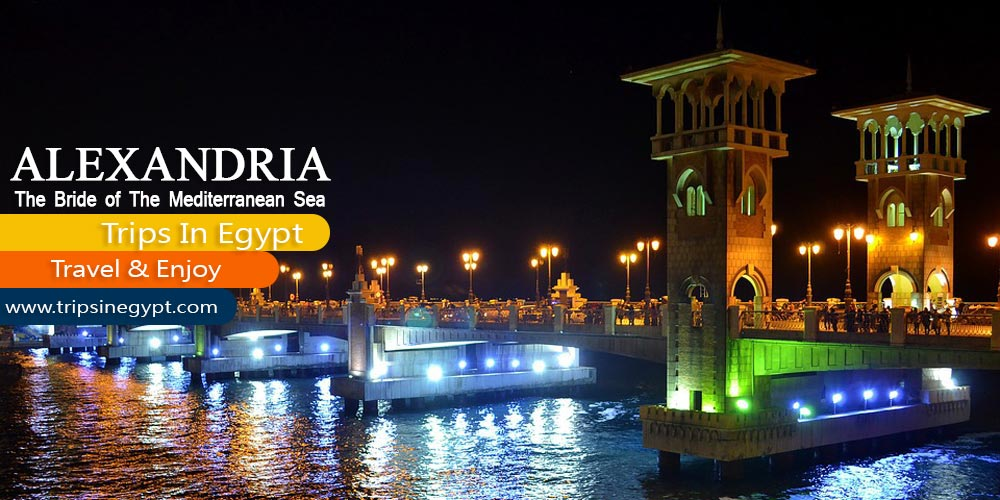 Alexandrai City - Marsa Alam Tours - Trips in Egypt