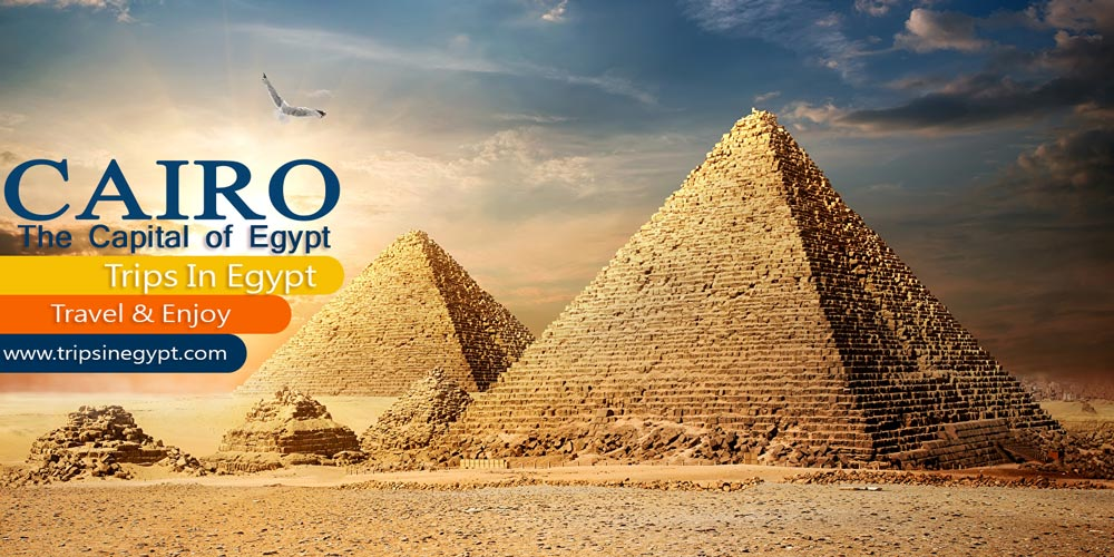 Cairo City - Marsa Alam Tours - Trips in Egypt
