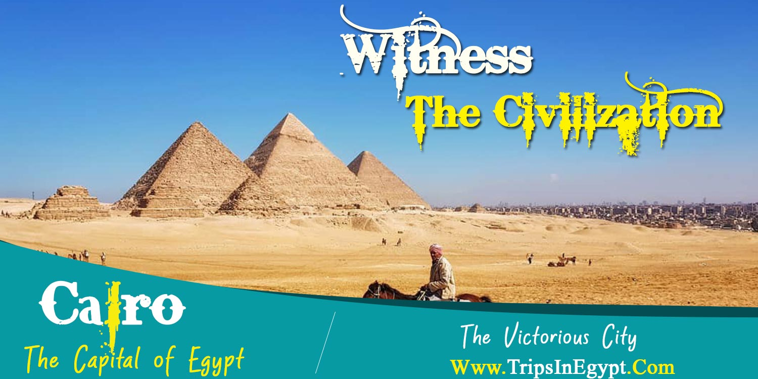 Cairo City - Safaga Shore Excursions - Trips in Egypt