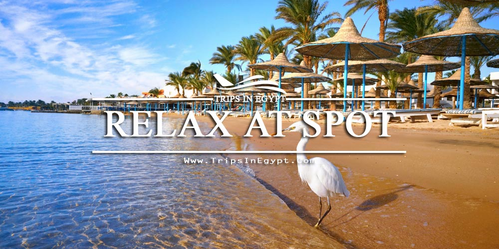 Red Sea Resorts - Egypt Red Sea Tours - Trips in Egypt
