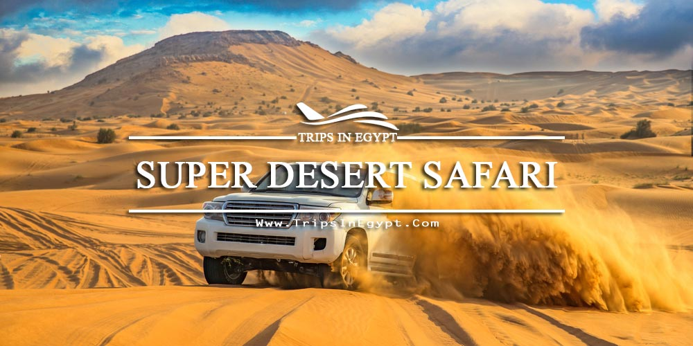 Super Desert Safari - Egypt Red Sea Tours - Trips in Egypt