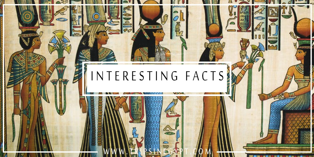 Ancient Egyptian Women Facts - Trips In Egypt