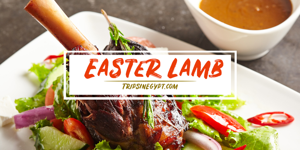 Easter Lamb - Trips in Egypt