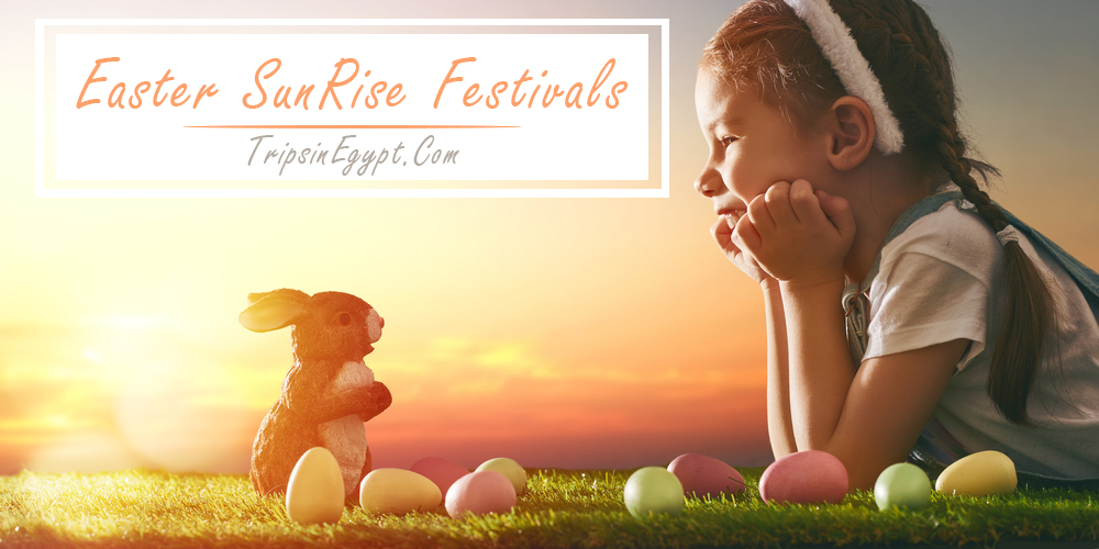 Easter Sunrise Festivals - Trips in Egypt
