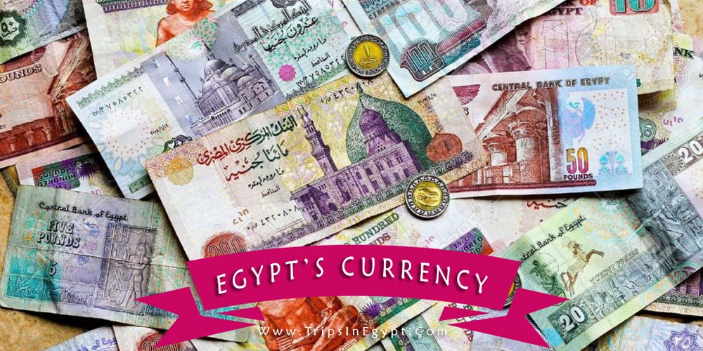 Egypt's Currency - Trips in Egypt