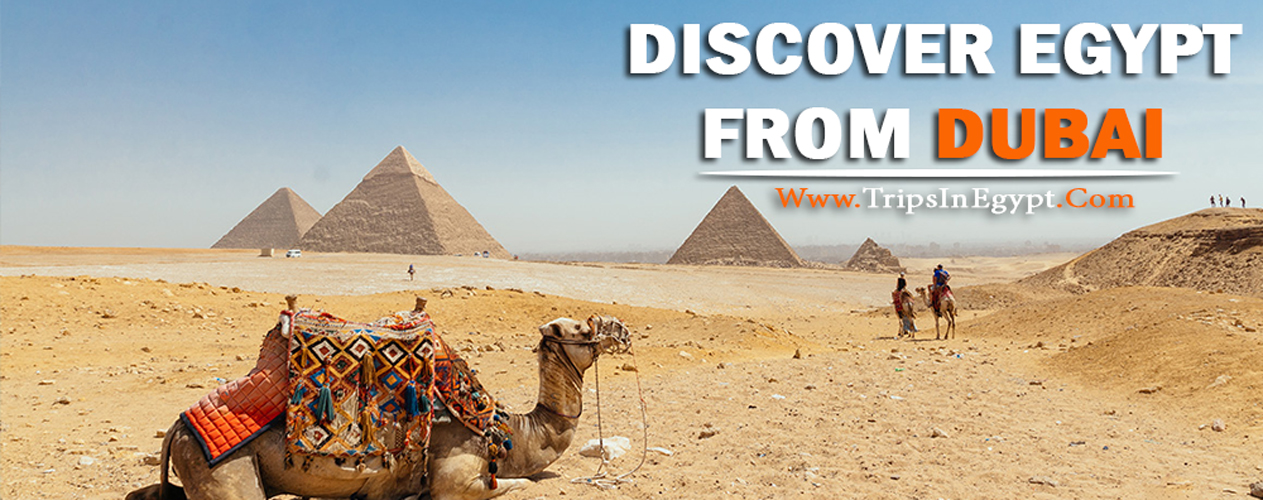 Egypt Tour Packages from Dubai - Egypt Tour from Dubai - Trips in Egypt