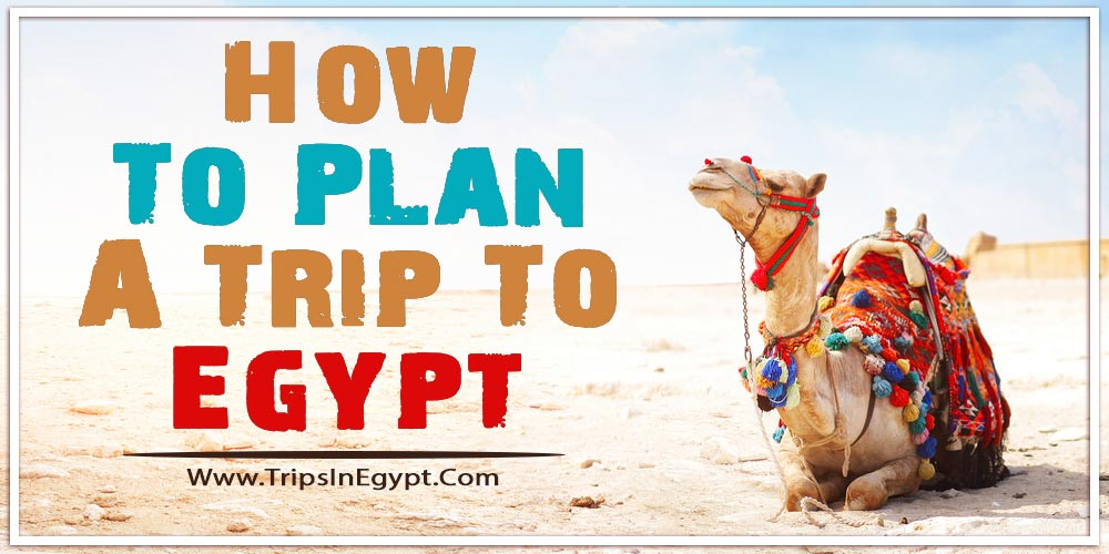 How To Plan A Trip To Egypt - Trips in Egypt