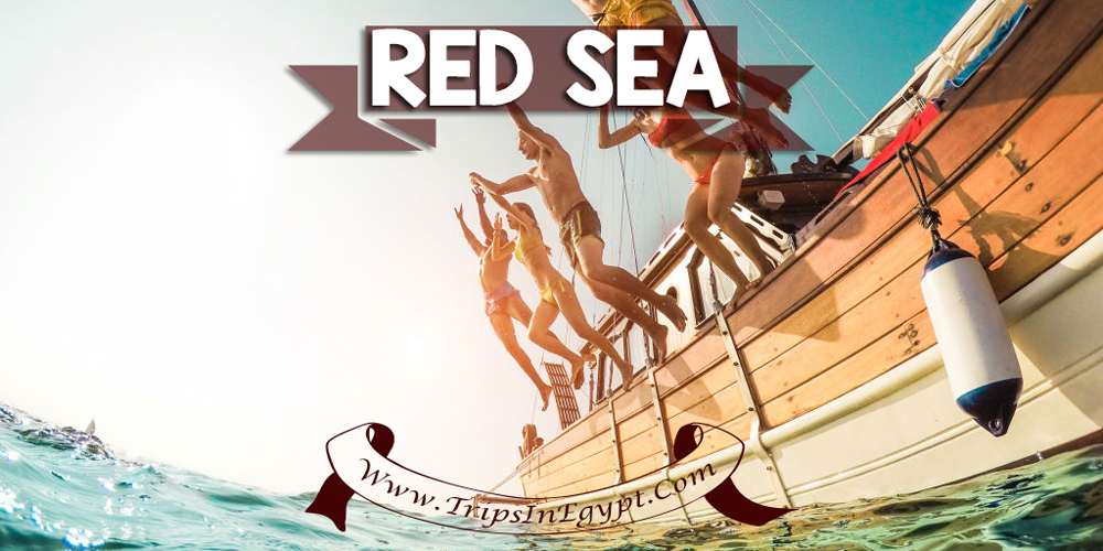 Red Sea - Best Places to Visit in Egypt - ww.tripsinegypt.com