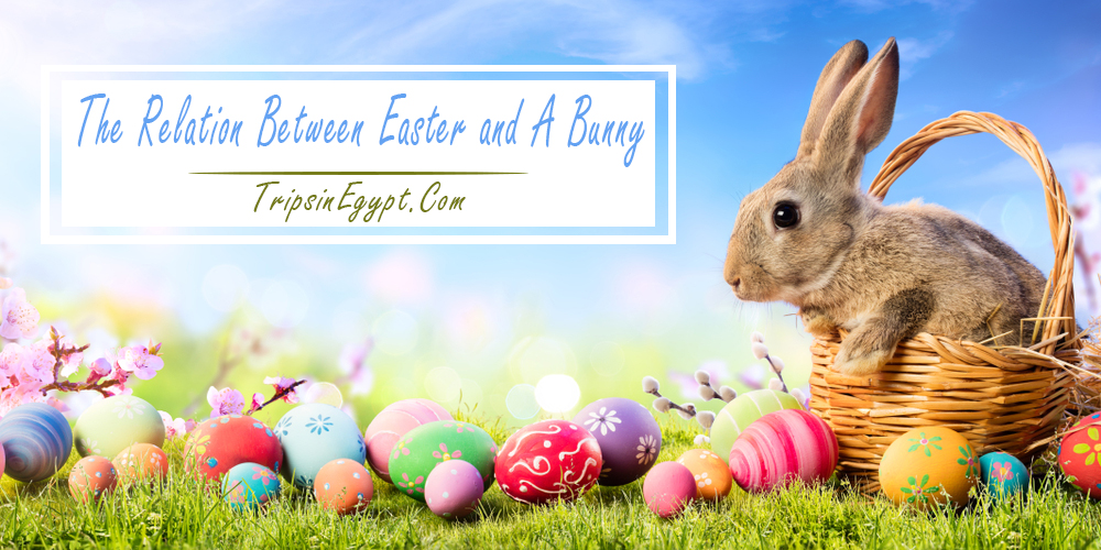 The Relation Between Easter and A Bunny - Trips In Egypt