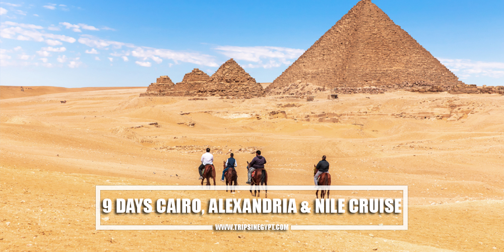 9 Days Cairo, Alexandria, and Nile Cruise - Egypt Itinerary 9 Days - Trips in Egypt