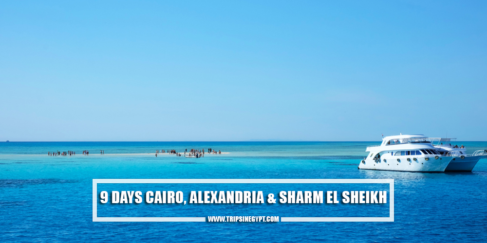 9 Days Cairo, Alexandria, and Sharm El-Sheikh - Egypt Itinerary 9 Days - Trips in Egypt