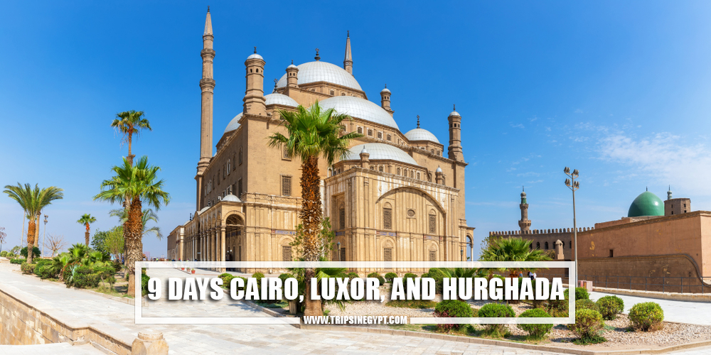 9 Days Cairo, Luxor, And Hurghada - Egypt Itinerary 9 Days - Trips In Egypt