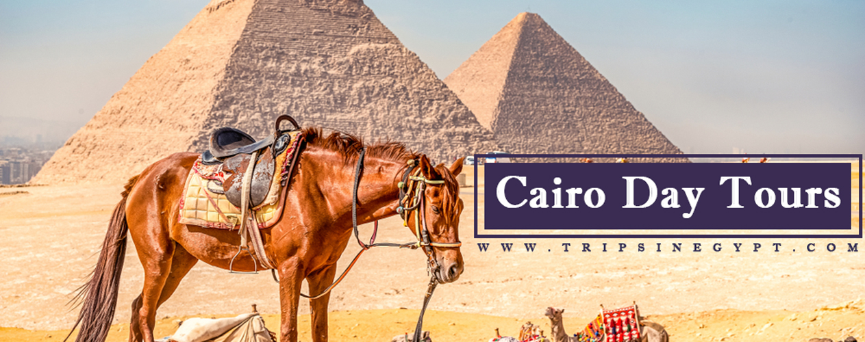 Cairo Day Tours - Trips in Egypt