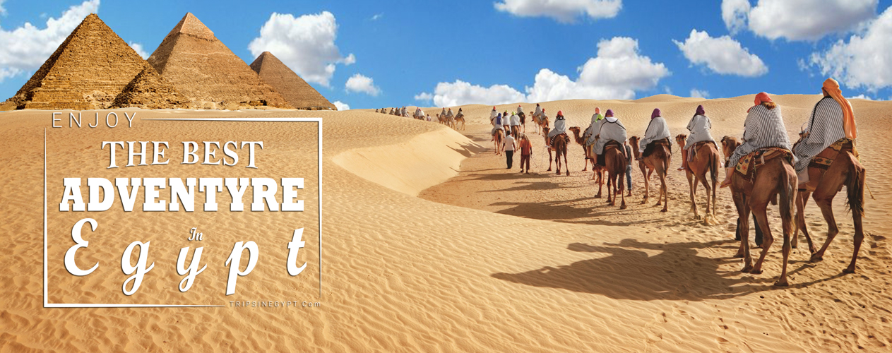 Egypt Adventure Tours - Trips in Egypt