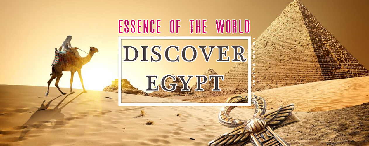 Discover Egypt - Trips In Egypt